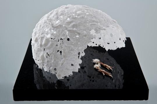 'Memento Mori (tempus fugit)', 2012